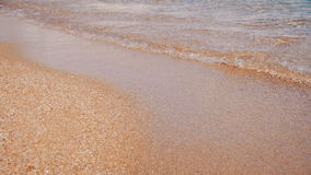 Egito, Mar Vermelho, praia da areia do ouro com Crystal Clear Water Soft Waves no movimento lento filme