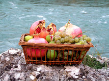 Eglantine, grape and fig. Fruits on stone and river in background stock photo