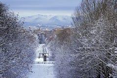 eglinton πάρκο Στοκ εικόνα με δικαίωμα ελεύθερης χρήσης