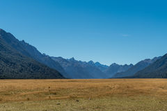 Eglinton Flats in Fiordland National Park, New Zealand. Fiordland National Park, New Zealand - March 16, 2017: The yellow dry flat lands of Eglinton Flats are a royalty free stock image