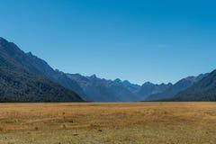 Eglinton lägenheter i den Fiordland nationalparken, Nya Zeeland Royaltyfri Bild
