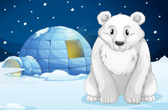 Egloo and bear Stock Photo