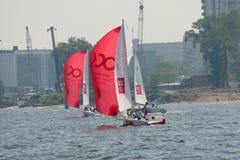 Żeglowania regatta na morzu Fotografia Royalty Free