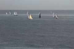 Żeglowania regatta w morzu Obraz Royalty Free