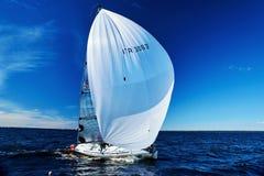 Żeglowania regatta w Rosja Obraz Stock