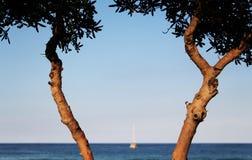 Żeglowanie łódź przy kotwicą, zamazaną Zdjęcia Royalty Free