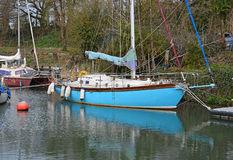 Żeglowanie łódź W drzewach obraz royalty free