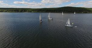 Żeglowanie statku jachty na jeziorze Widok z lotu ptaka: Żaglówki unosi się na jeziorze zdjęcie wideo