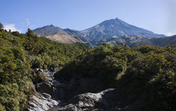 Egmont National Park Stock Image