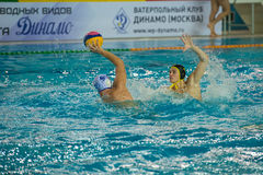 Egor Emelyanov 2. MOSCOW - NOVEMBER 18, 2016: Egor Emelyanov 2 in action at a Russia national championship water-polo game between Dynamo-Moscow white vs STORM Royalty Free Stock Image