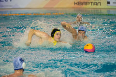 Egor Vasilyev 3. MOSCOW - NOVEMBER 18, 2016: Egor Vasilyev 3 in action at a Russia national championship water-polo game between Dynamo-Moscow white vs STORM Stock Photo