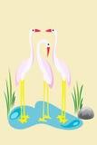 egret rodzina Zdjęcie Stock
