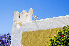 Egret standing on the wall of the House Stock Photography