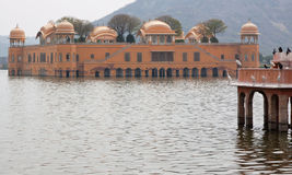 Egrets, Cormorants and an Indian Water Palace Royalty Free Stock Images
