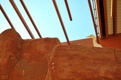 Egretta albumy, Biały Egret/ Obraz Royalty Free