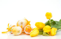 Egs com tulips Imagens de Stock