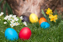 Egs de Easter Imagem de Stock