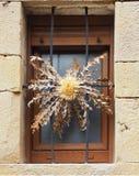 Eguzkilore en venster Stock Foto's