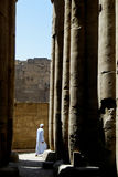 Egypt. The ancient Luxor temple Royalty Free Stock Image