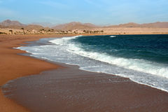 Egypt . Beach in Charm an ale the Sheikh Royalty Free Stock Photo