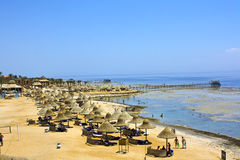 Egypt beach with reef Royalty Free Stock Photo