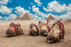 Egypt Cairo - Giza. General view of pyramids Royalty Free Stock Photography