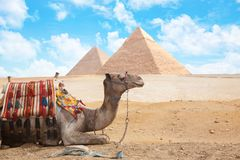 Egypt Cairo - Giza. General view of pyramids Stock Images