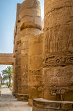 Egypt. Column in temple in egypt luxor royalty free stock photography
