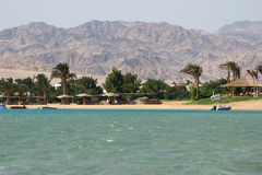 Egypt, Dahab, Sinai Peninsula. Red sea. Royalty Free Stock Photos