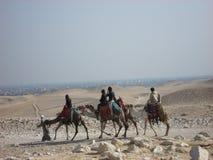 Egypt Deserto Fotos de Stock Royalty Free