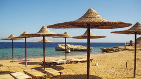 Egypt, Empty Sunny Beach with Umbrellas, Sun Beds on the Red Sea stock footage