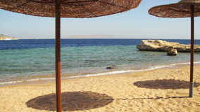 Egypt, Empty Sunny Beach with Umbrellas, Sun Beds on the Red Sea stock video footage