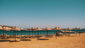 Egypt, Empty Sunny Beach with Umbrellas, Sun Beds on the Red Sea. The coastal resort line, where people relax and sunbathe. Empty sunny beach in Egypt, no stock video footage