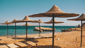 Egypt, Empty Sunny Beach with Umbrellas, Sun Beds on the Red Sea. The coastal resort line, where people relax and sunbathe. Empty sunny beach in Egypt, no stock video