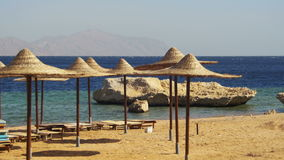 Egypt, Empty Sunny Beach with Umbrellas, Sun Beds on the Red Sea. Empty Sunny Sandy Beach in Egypt with umbrellas, sun beds on the Red Sea, South Sinai, Sharm el stock video