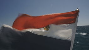 Egypt flag waving on the wind stock footage