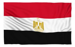 egypt flagga stock illustrationer