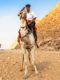 EGYPT, GIZA - OCTOBER 29 2014: A Man in Police Uniform Royalty Free Stock Images