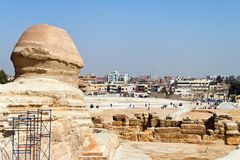 Egypt, giza, sphinx Stock Photo