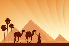 Egypt Great Pyramids with Camel caravan on sunset background Stock Image
