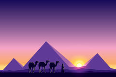 Egypt Great Pyramids with Camel caravan on sunset background. Vector illustration Royalty Free Stock Image