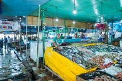 Market counters full of fresh fish