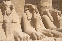egypt karnak Luxor taranuje statuy świątynne Obraz Royalty Free