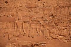 egypt karnak serii świątyni thebes Obraz Royalty Free