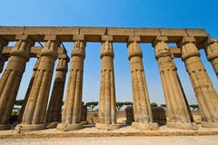 Egypt, Luxor, Amun Temple of Luxor. Africa, Egypt, Luxor, Amun Temple of Luxor Stock Photos