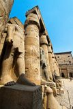 Egypt, luxor, amun temple of luxor. Royalty Free Stock Images