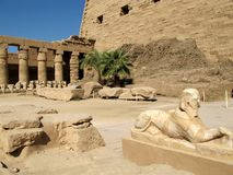 Small alley of the ram-headed sphinxes in front of the Karnak temple in Luxor royalty free stock image