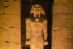 Egypt-Luxor Temple Royalty Free Stock Images