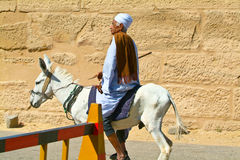 Egypt, Nile Valley, Luxor area, Thebes-Donketyand Rider Royalty Free Stock Images