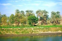 Egypt. Oasis next to Nile river Stock Photo